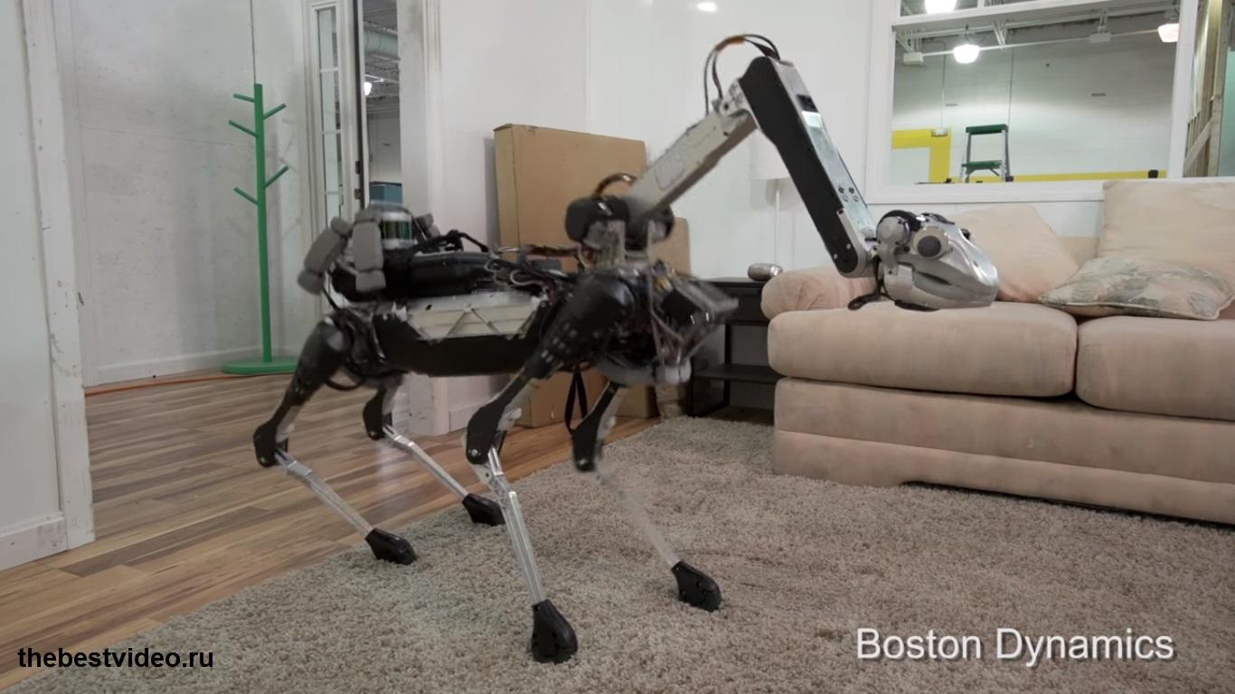 robot spot mini