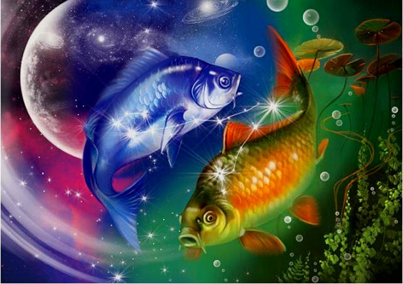 Картинки про знаки зодиака рыбы, маквин картинки